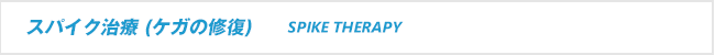 スパイク治療 (捻挫専門治療)